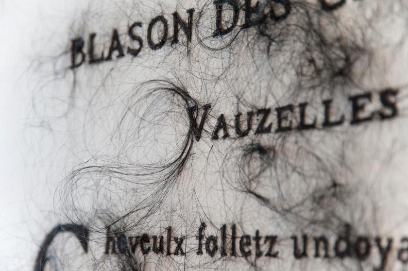 angela-su_blason-des-cheveulx_closeup-1