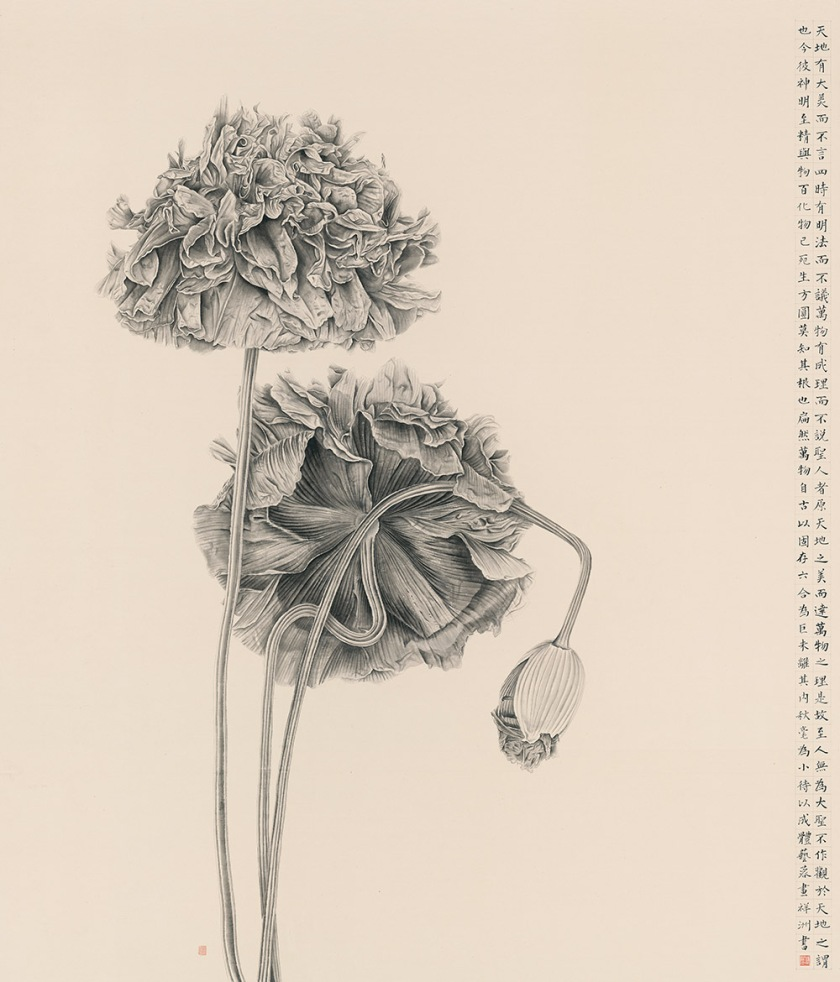 Zhang2107_Poppy